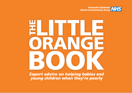 Little_Orange_Booklet